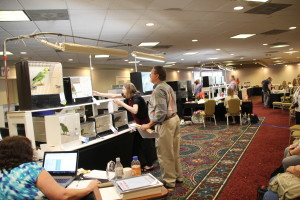 View of the Exhibition Hall at the Radisson during the AFA convention in August 2016. © COPYRIGHT 2016 Eddie's Aviary